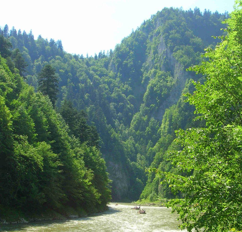 Schlucht des Dunajec-Durchbruch, Bild: Anna Reg