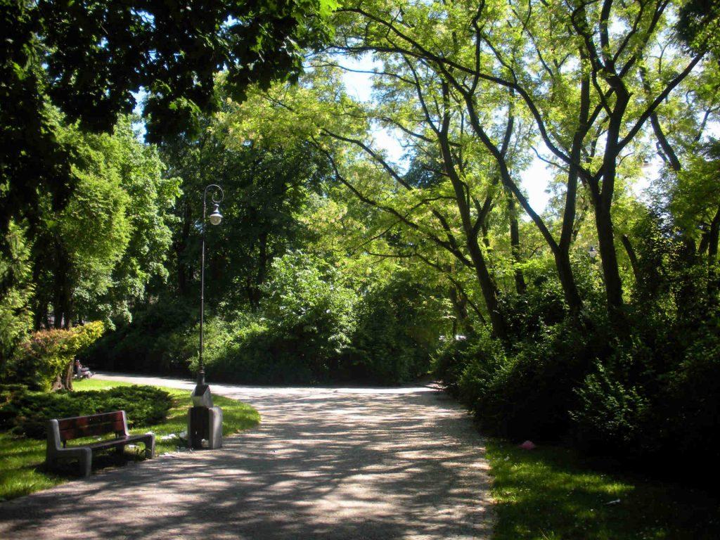 Zu sehen ist der Poniatowski Park in Bjelostock, Bild: Gumisza