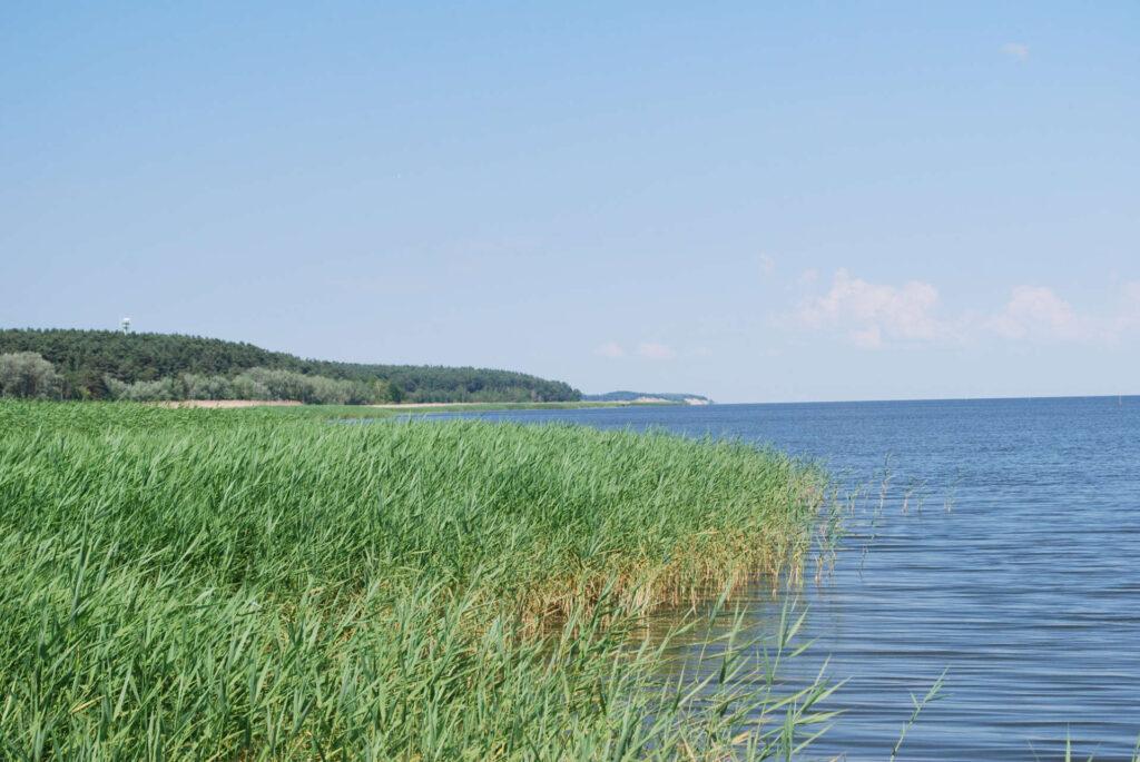 Zu sehen ist ein Seeblick bei Tag an der Frischen Nehrung, Bild: Polimerek